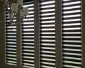 zebra-shades-6